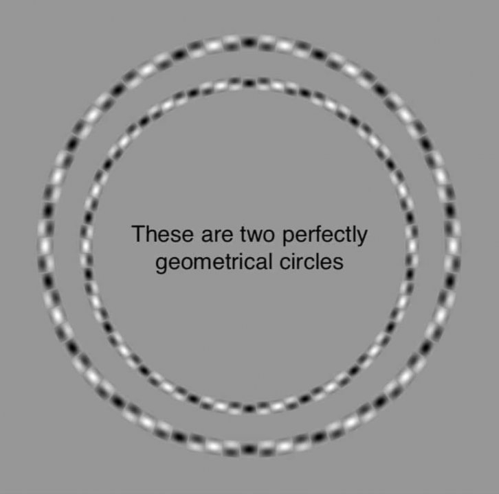 These are two perfectly geometrical circles